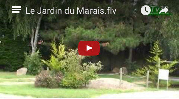 video camping vendee