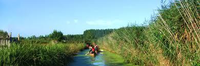 Cano dans les marais le jardin du marais for Camping le jardin du marais