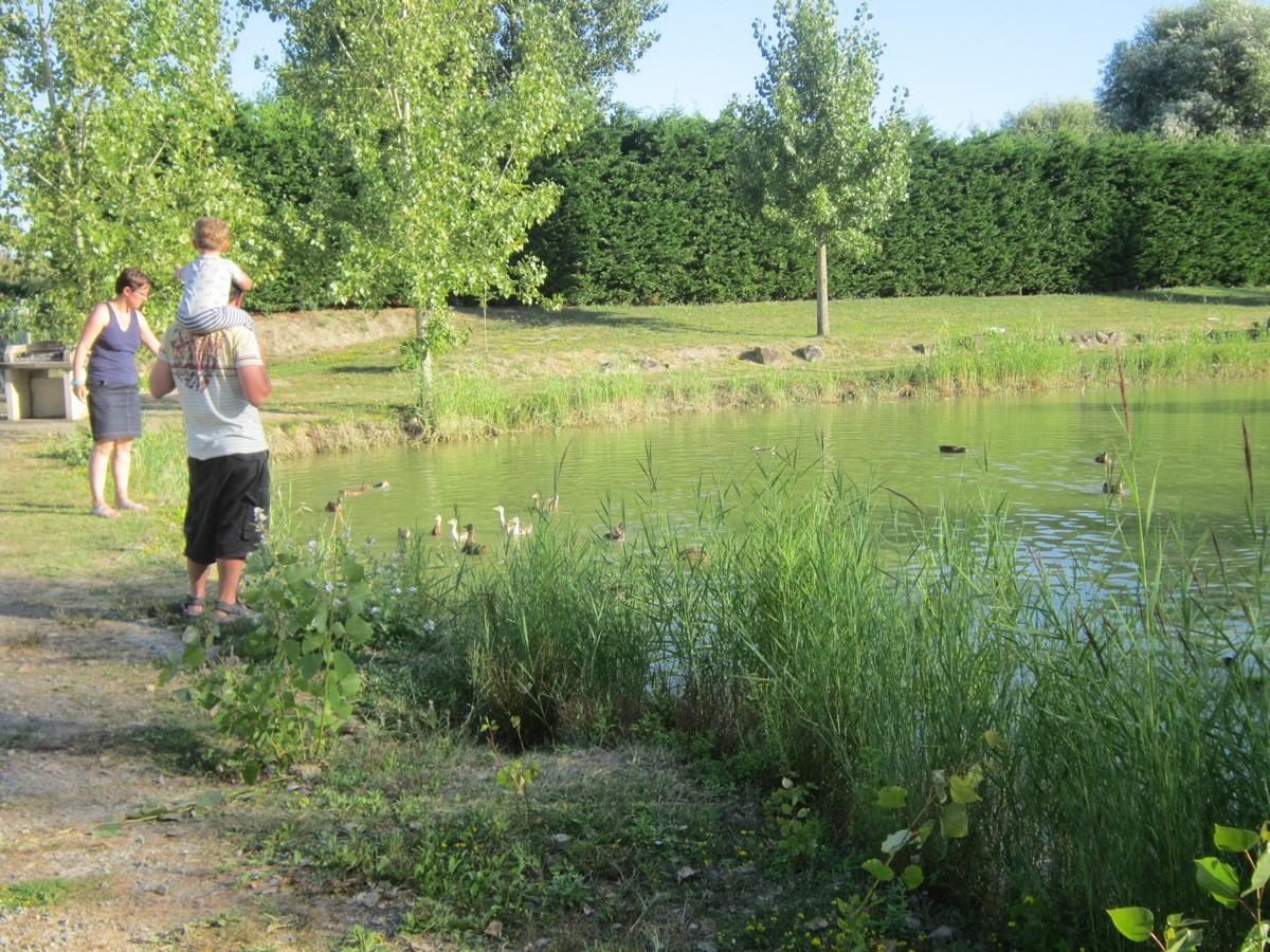 Détente et promenade familiale au plan d'eau