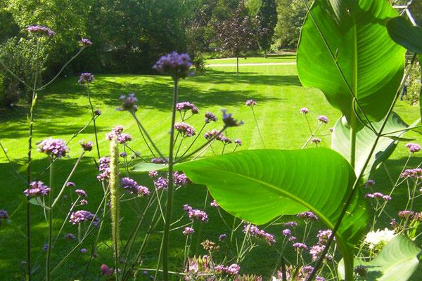 Top 5 des parcs et jardins de vend e le jardin du marais for Camping le jardin du marais