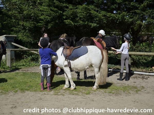 Club hippique Havre de vie